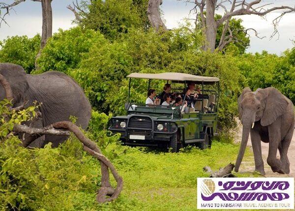 تور آفریقای جنوبی آبان 95