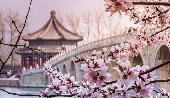 تور پکن-شانگهای ویژه نوروز 96 پرواز ماهان